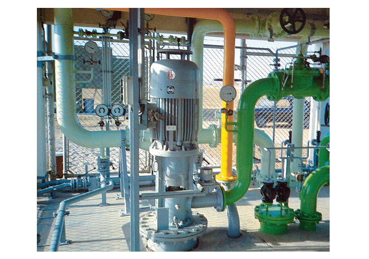 lowara vertical multistage pump pdf